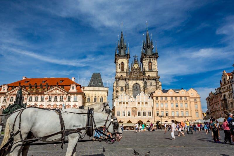 Menigte, paarden en de Maagdelijke kerk van Mary in Praag stock afbeeldingen