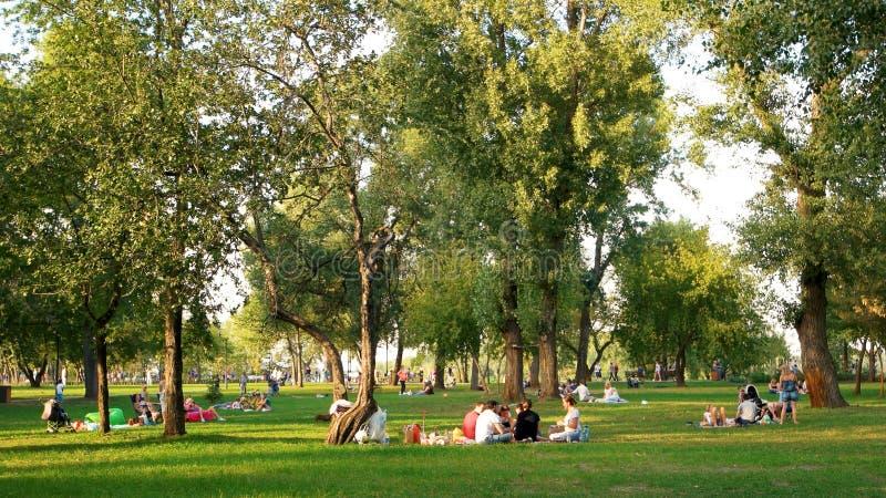 Menigte van mensen die op het gazon van het stadspark ontspannen stock foto