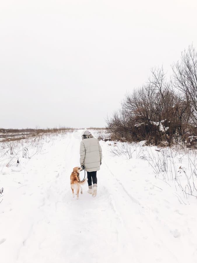 Menina à moda do moderno que anda com o cão dourado bonito no parque frio nevado Mulher que toma a caminhada com seu cão no telef foto de stock