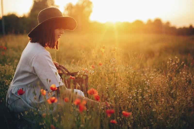 Menina à moda no vestido de linho que recolhe flores na cesta rústica da palha, sentando-se no prado da papoila no por do sol Mul fotos de stock