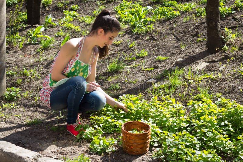 A menina é contratada na remoção de ervas daninhas da grama