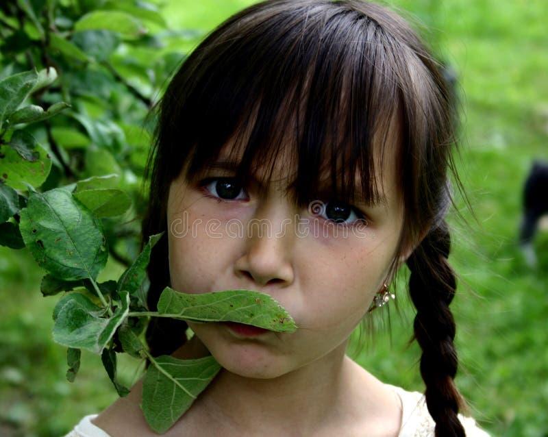 Download Menina foto de stock. Imagem de vida, matriz, fêmea, perfume - 200342