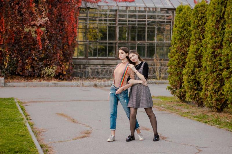 A menina abraça sua amiga firmemente no parque do outono foto de stock royalty free