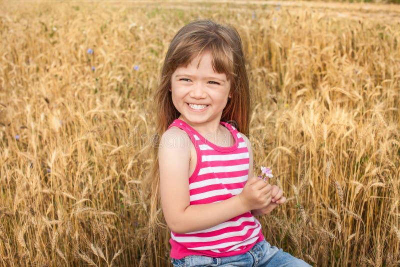 Menina adorável da criança em idade pré-escolar que anda felizmente no campo de trigo foto de stock
