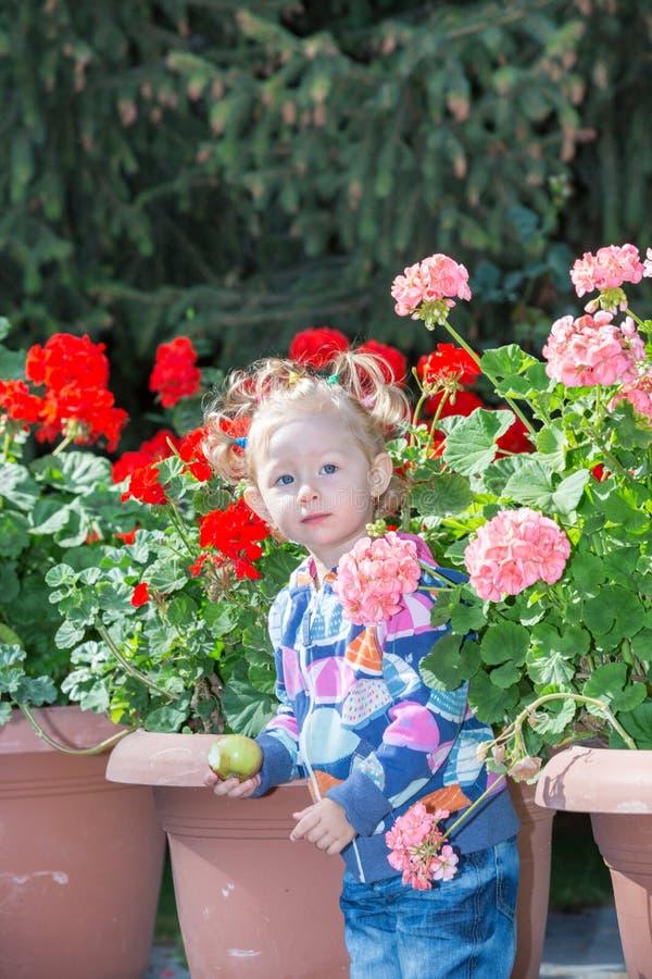 Menina adorável da criança pequena no parque perto da cama de flor no dia de verão fotografia de stock