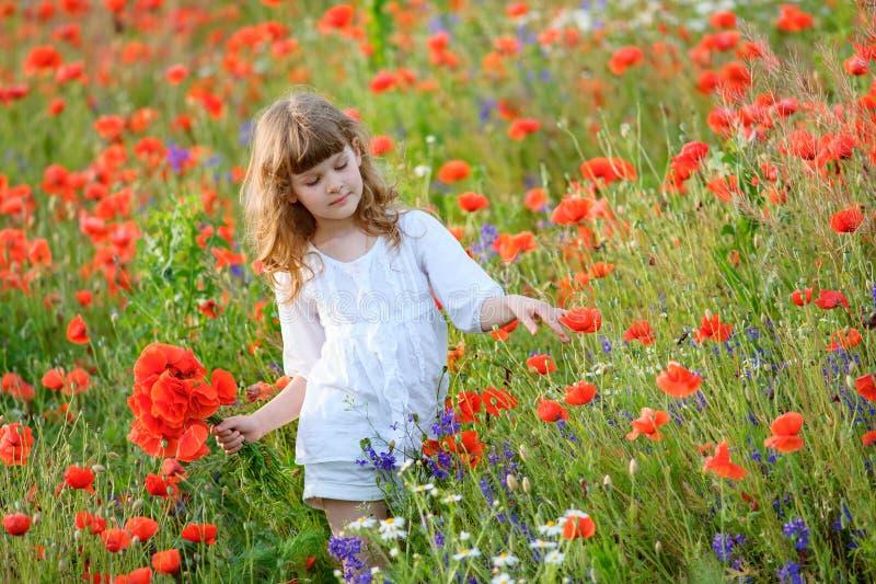 Menina adorável no vestido branco que joga no campo de flor da papoila fotografia de stock royalty free
