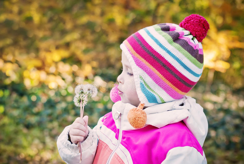 Menina adorável que purga o dente-de-leão fotografia de stock royalty free