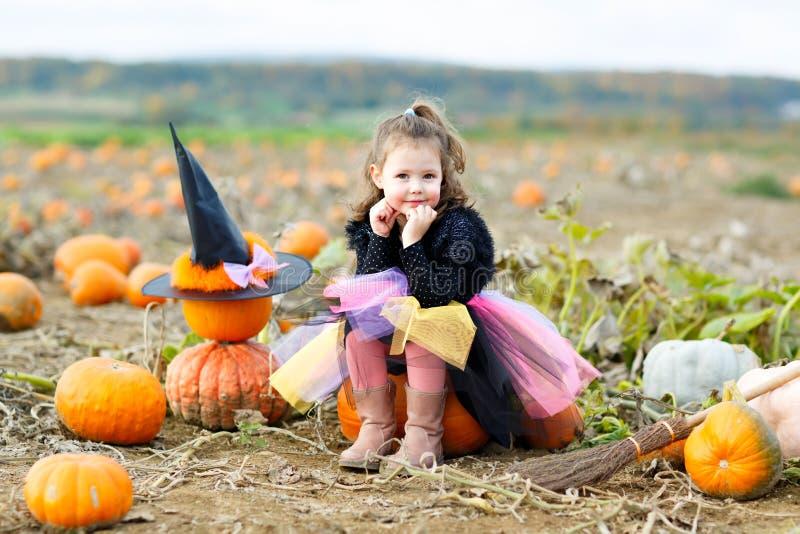 Menina adorável que veste o traje da bruxa do Dia das Bruxas que tem o divertimento na exploração agrícola do remendo da abóbora  imagens de stock royalty free