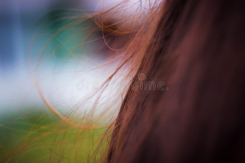 menina adulta nova no cabelo do vento fotos de stock royalty free
