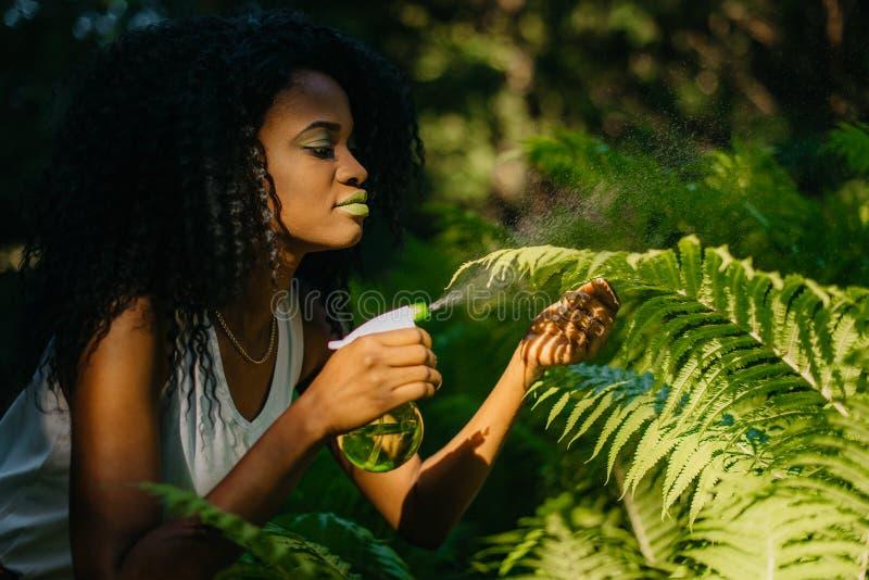 A menina africana encantador nova dos gorgeours com sombras para os olhos verdes e batom que pulveriza as samambaias usando o plá fotos de stock