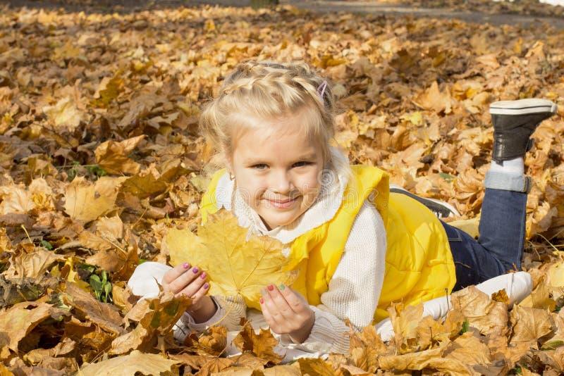 Menina alegre bonita entre as folhas de outono fotos de stock royalty free