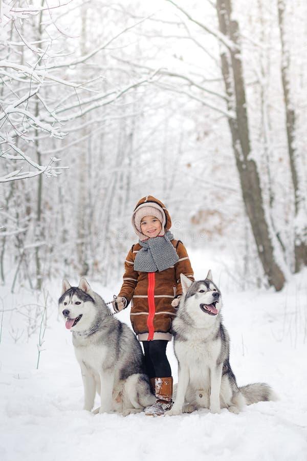 A menina alegre com os dois cães de puxar trenós dos cães imagens de stock