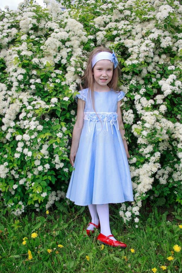 A menina alegre está estando nos arbustos de uma cereja de pássaro fotos de stock