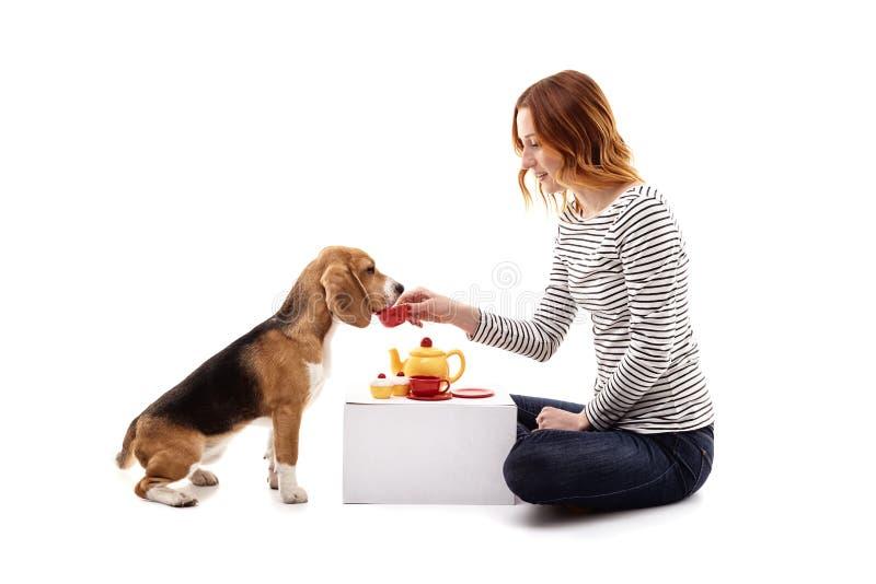 A menina alegre está jogando com seu cachorrinho imagens de stock