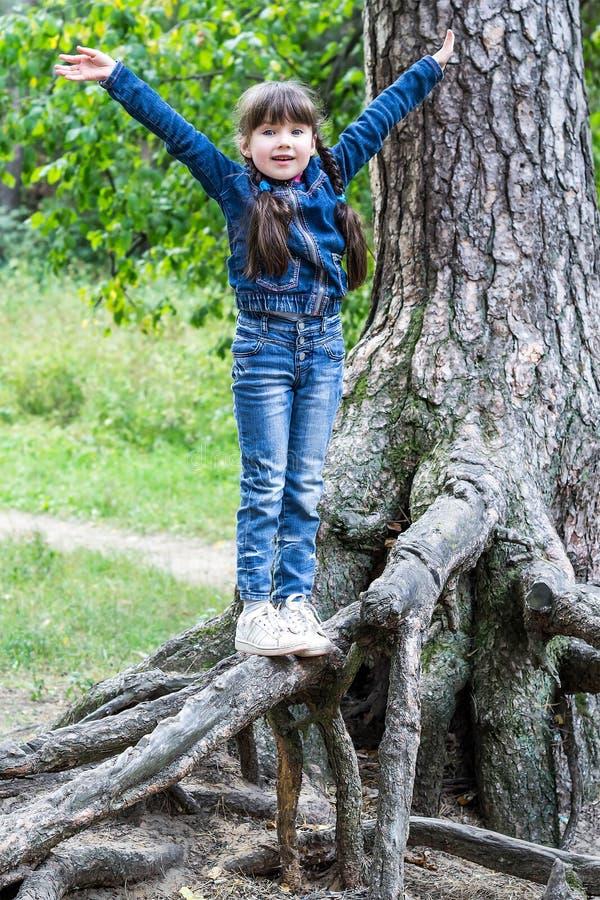 Menina alegre pequena que vacila nas raizes de uma árvore imagens de stock royalty free