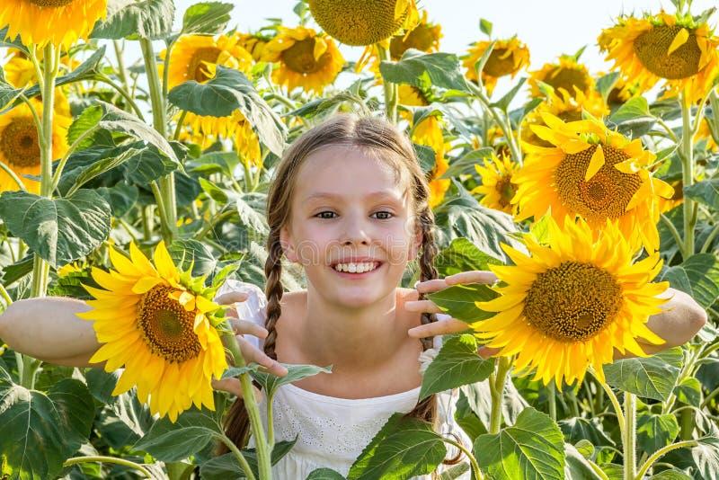 Menina alegre que esconde nos girassóis fotos de stock royalty free