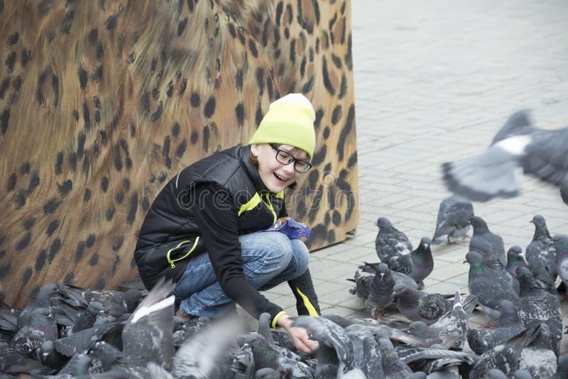A menina alimenta pombos no quadrado de cidade imagem de stock
