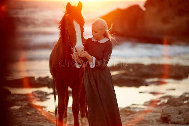 A menina alimenta um cavalo no por do sol fotografia de stock royalty free