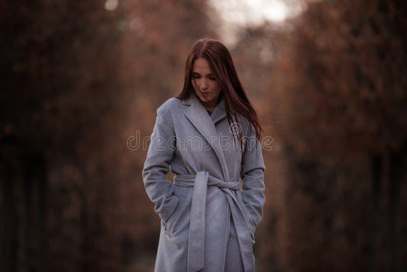 A menina anda no parque do outono imagens de stock