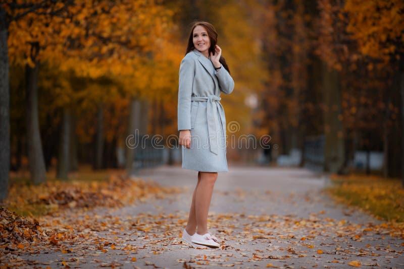 A menina anda no parque do outono imagem de stock royalty free