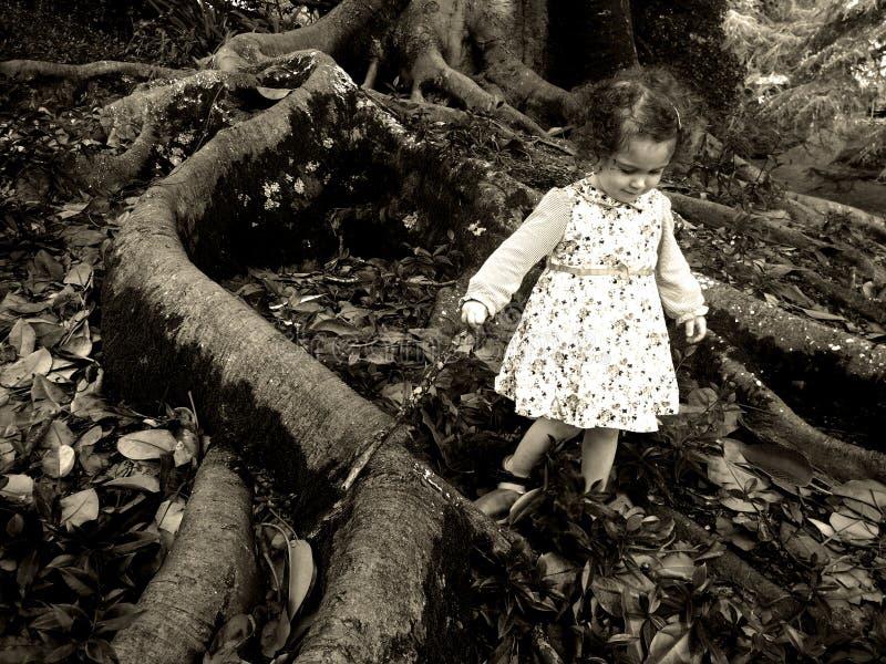 A menina anda sob uma árvore velha gigante fotos de stock