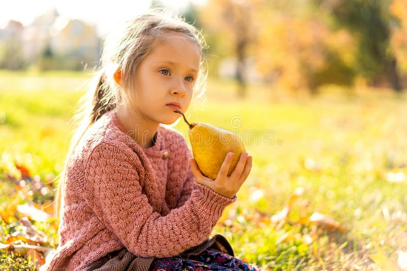 Menina 4 anos de caminhadas velhas no parque do outono que guarda uma pera imagem de stock