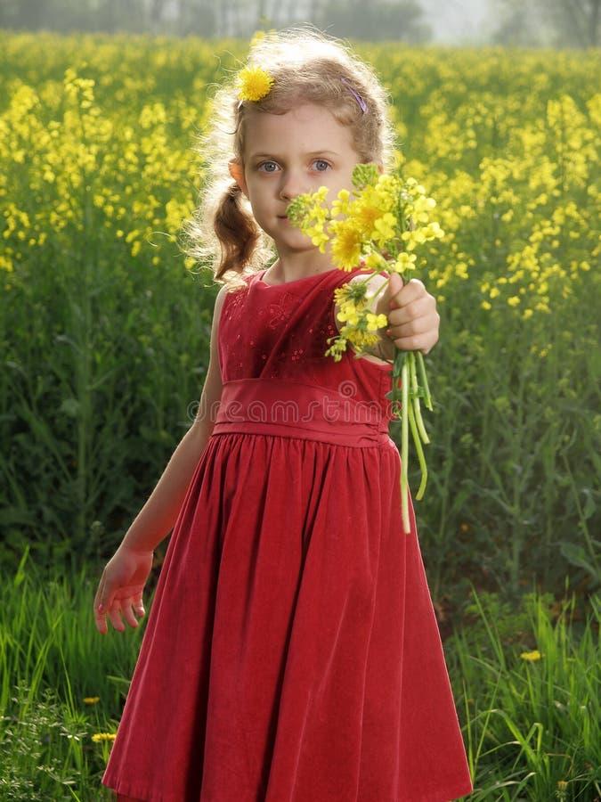 Menina ao ar livre fotografia de stock royalty free