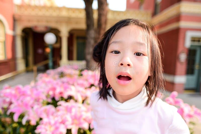Menina asiática bonito com o campo de flor cor-de-rosa exterior imagem de stock royalty free