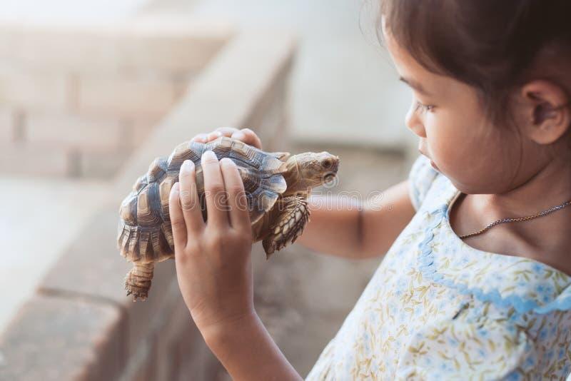 Menina asiática bonito da criança que guarda e que joga com tartaruga imagem de stock