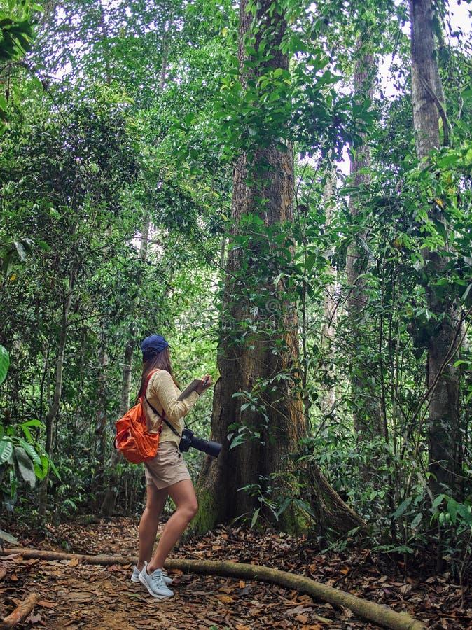 Menina asi?tica do bot?nico que aprende a atividade exterior da aventura com estilo de vida na floresta ?mida fotos de stock royalty free