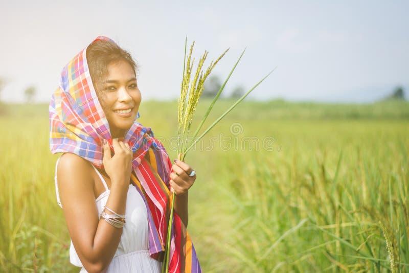 A menina asiática feliz aprecia no campo verde do arroz, campo de Thail imagem de stock royalty free
