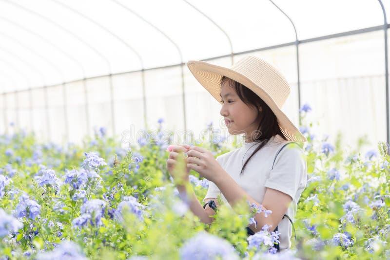 Menina asiática feliz entre flores no jardim, cabo Leadwor imagem de stock