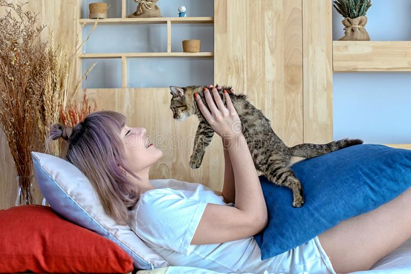 Menina asiática feliz que joga com os gatos no sofá-cama As mulheres asiáticas são brincalhão com os gatos na sala de visitas imagem de stock royalty free