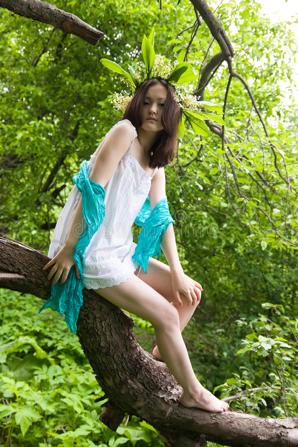 Menina asiática na floresta fotos de stock royalty free