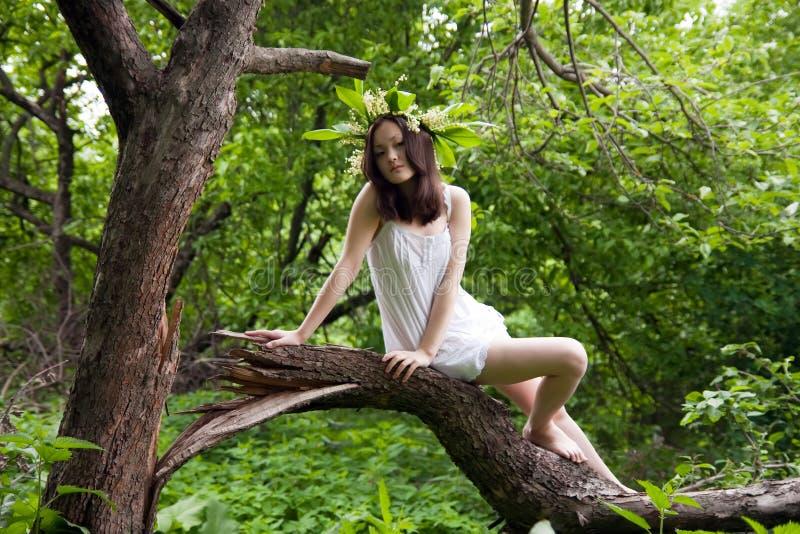 Menina asiática no branco sobre a floresta fotografia de stock