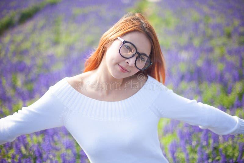 Menina asiática no campo da alfazema foto de stock royalty free