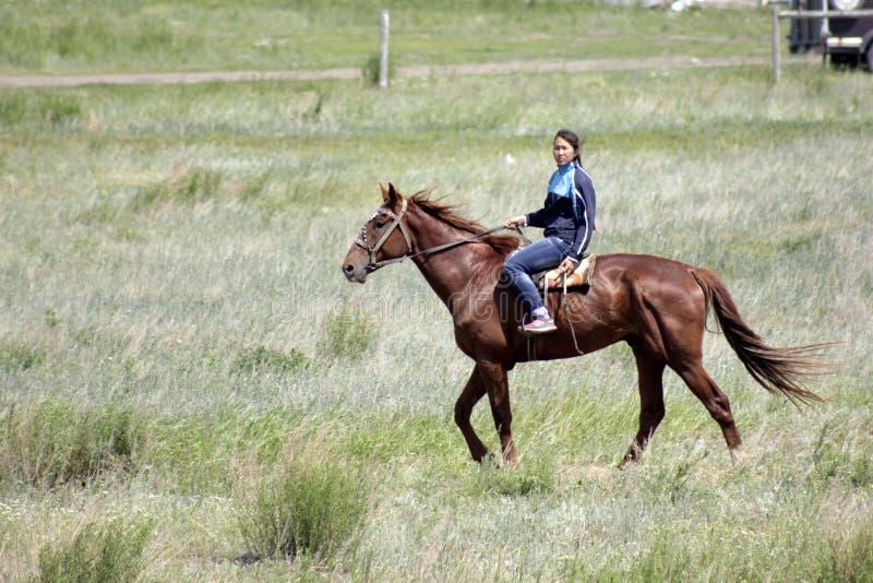 A menina asiática nova está montando seu cavalo puro da raça no estepe de Cazaquistão imagem de stock royalty free
