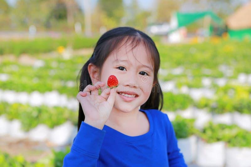 Menina asiática pequena adorável da criança que come a morango no campo fotos de stock