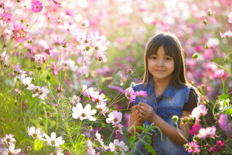Menina asiática pequena em campos de flor fotos de stock