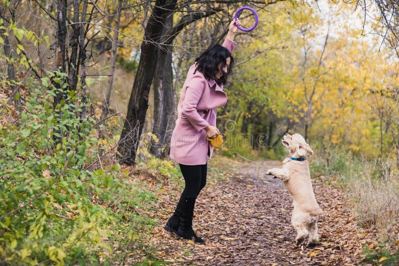 Menina asiática que joga com seu cão no parque fotografia de stock royalty free