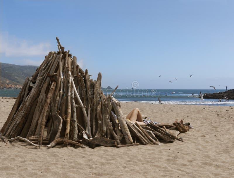 Menina atrás do disjuntor de vento na praia foto de stock royalty free