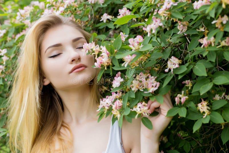 Menina bonita bonita com cabelo louro longo que aprecia o rosebush de florescência próximo da natureza em um t-shirt branco com v fotografia de stock royalty free