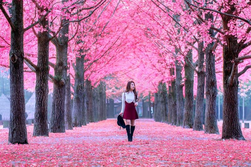 Menina bonita com as folhas do rosa em Nami Island imagem de stock