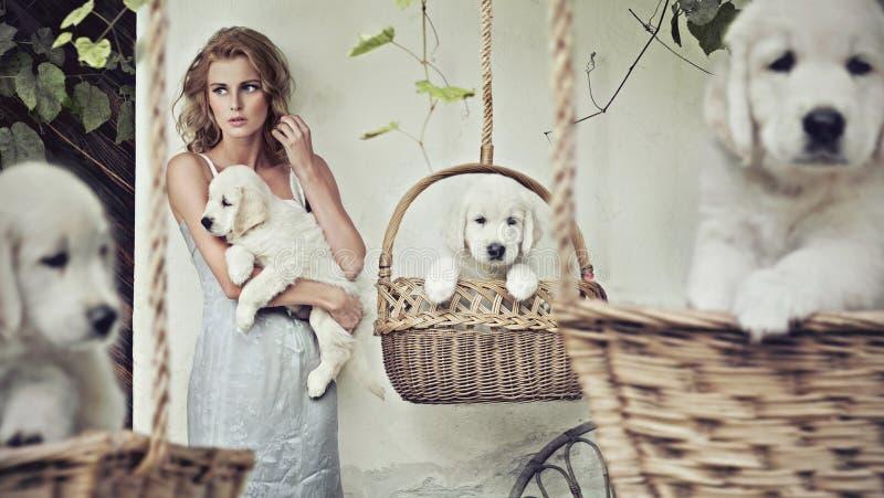 Menina bonita com filhotes de cachorro imagens de stock royalty free