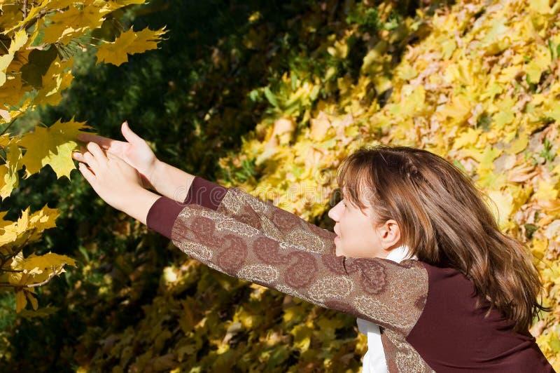 Menina bonita com folhas de outono fotografia de stock