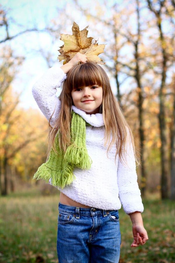 Menina bonita com folhas de outono ao ar livre imagens de stock