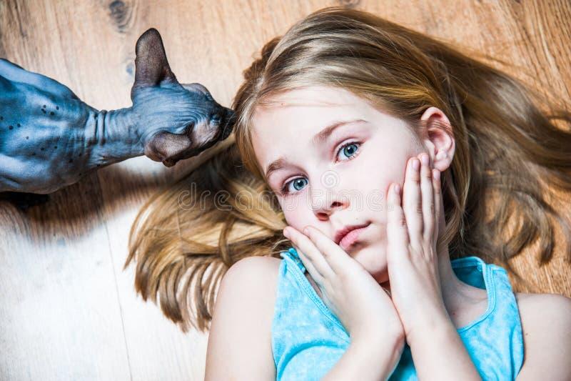 Menina bonita com o gato cinzento da esfinge que encontra-se na farinha na sala imagem de stock