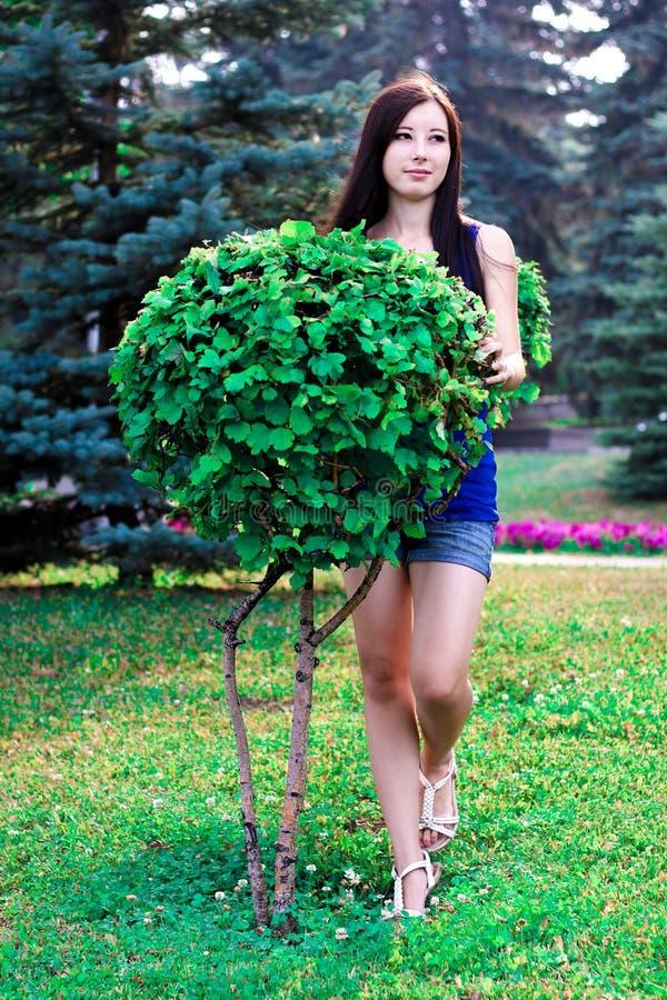 A menina bonita completo no parque perto dos arbustos decorativos foto de stock