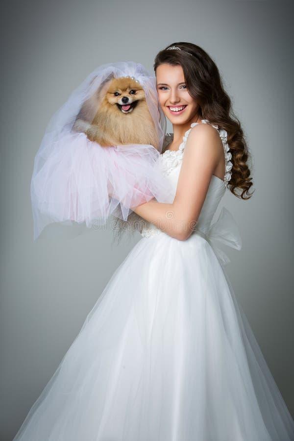 Menina bonita da noiva com a noiva do spitz no fundo cinzento fotografia de stock royalty free