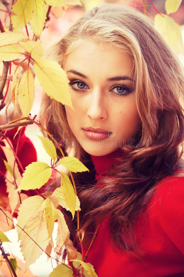 Menina bonita do outono fotografia de stock royalty free